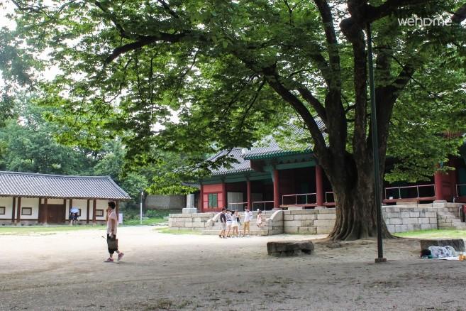 Punggyeong(Autumn)