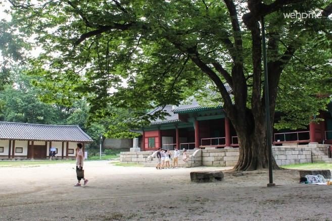 Punggyeong(Spring)