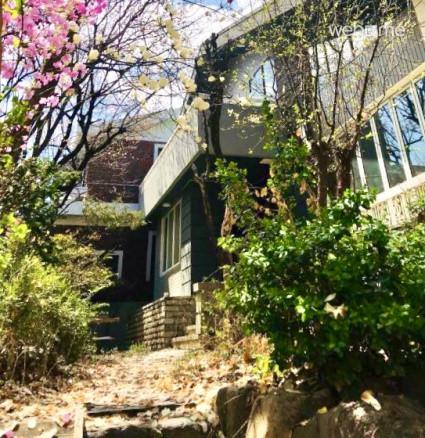 Villa house with garden