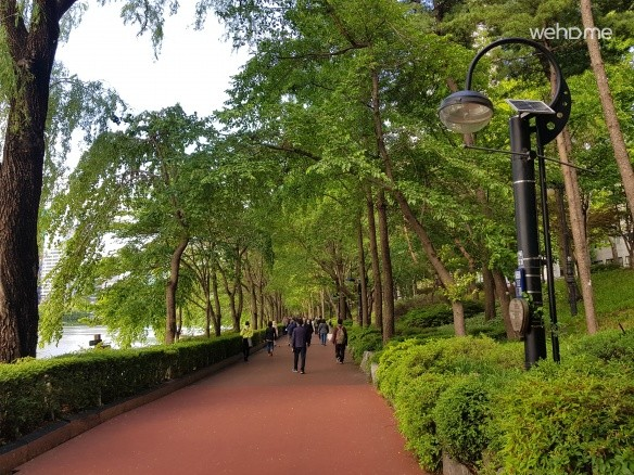 Trekking to feel the fresh air from the dense woods along the lake Seokchon