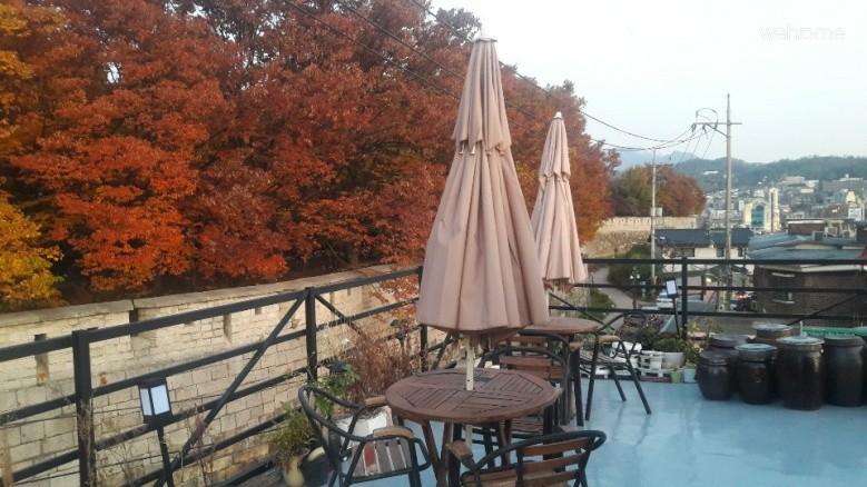 성곽 가을단풍과 옥상