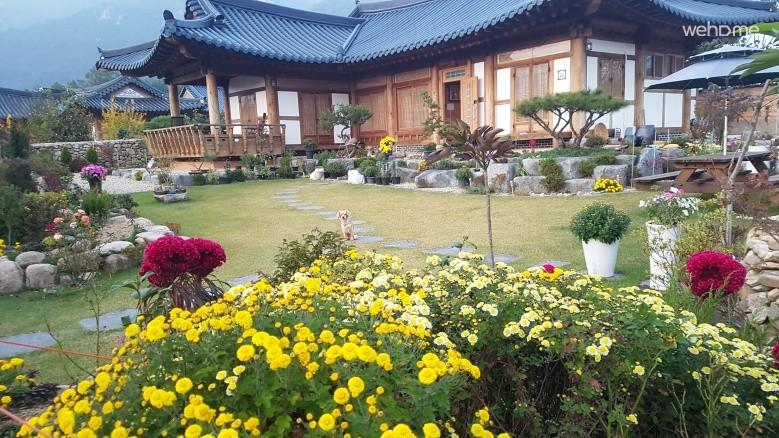 Gangjin Hanok Hanok Village Moonlight Smile Smile Room
