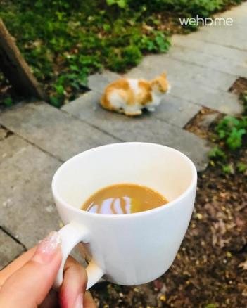 정원에서 커피 한잔 하세요