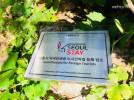 나루는 서울시에서 주관하는 서울스테이에 정식 등록된 우수하고 위생적이며 안전한 최고의 휴식처입니다.