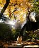 가을날 단풍이 곱게 물든 정원입니다.