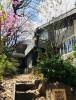 봄날의 진달래와 목련의 정원