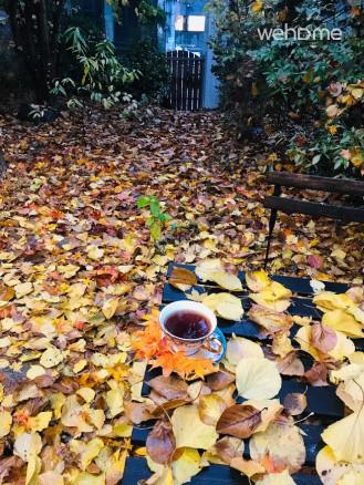 가을날 단풍잎 내린 정원에서 홍차 한잔, 차와 커피는 무료로 제공됩니다.