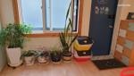 [방3+화3] 예쁜 마당이 있는 독채, 경복궁 청와대 서촌 인왕산 광화문
