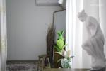 이태원 마당있는 단독주택 투룸 독채